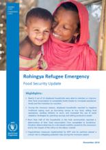 Rohingya Refugee Emergency - Food Security Update, December 2018