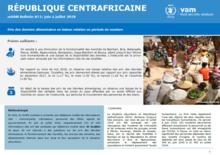 Central African Republic - mVAM Monitoring