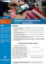 Turkey - Emergency Social Safety Net Market Bulletin