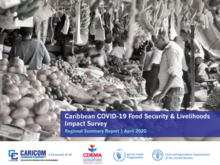 Caribbean COVID-19 Food Security & Livelihoods Impact Survey - Round 1