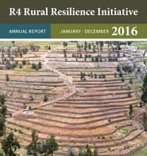 R4 Rural Resilience Initiative Reports