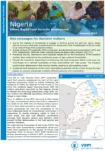 Nigeria - Dikwa: Rapid Food Security Assessment, January 2017
