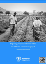 Exploring Projected Outcomes of the Food Secure Small grains project: Evidence from Zimbabwe, April 2017