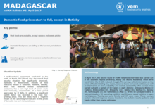 Madagascar - mVAM Monitoring