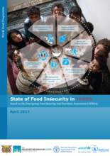 Yemen - State of Food Insecurity in Yemen based on the Emergency Food Security and Nutrition Assessment (EFSNA), April 2017