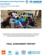 Nigeria - Interagency Initial Rapid Needs Assessment: Damasak LGA, Borno State, March 2017