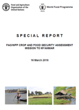 Myanmar - FAO/WFP Crop and Food Security Assessment Mission, March 2016