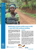 Stabilization of post-conflict areas in DRC – joint WFP-FAO resilience building (December 2020)
