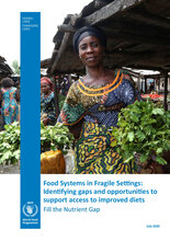 Food Systems in Fragile Settings - 2020