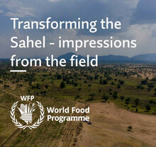 Transforming the Sahel – Impressions from the field - 2021