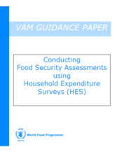 Conducting Food Security Assessments using Household Expenditure Surveys (HES), June 2017