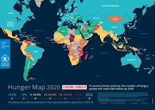 2020 - Hunger Map