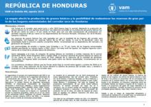 Honduras - mVAM Monitoring