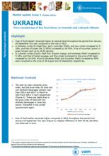 Ukraine - Market Update, 2014
