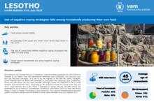 Lesotho - mVAM Monitoring