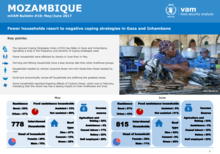 Mozambique - mVAM Monitoring