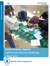 Nigeria - North Eastern Nigeria Food Security Outcome Monitoring, August 2017