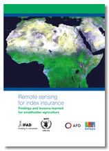 2017 - Remote Sensing for Index Insurance - findings and lessons learned for smallholder agriculture