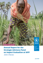 Annual Report 2020 for the Strategic Advisory Panel on Impact Evaluation at WFP