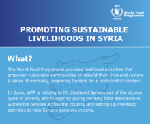 2017 - Promoting sustainable livelihoods in Syria