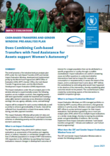 Cash-based transfers and gender window: pre-analysis plan