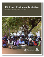 2017 - Rural Resilience Initiative  -  Quarterly Report   (April-June 2017)