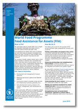 2019 - World Food Programme -  Food Assistance for Assets (FFA)