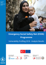 Turkey - Emergency Social Safety Net Programme, Vulnerability Profiling 2018: Analysis Results