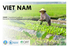 Viet Nam: Consolidated Livelihood Exercise for Analysing Resilience