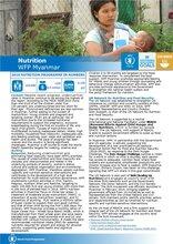 WFP Myanmar: Nutrition Programme