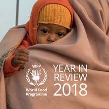 WFP -  Year in Review 2018