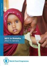 WFP in Somalia - 2013 in Review
