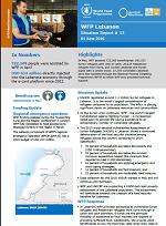 Situation Report - Lebanon
