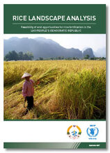 Rice Landscape Analysis - Feasibility of and opportunities for rice fortification in the Lao People's Democratic Republic