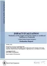 Food for Assets on Livelihood Resilience in Guatemala: An Impact Evaluation