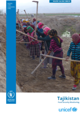 Tajikistan - Food Security Monitoring, 2018