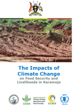 Uganda - The Impacts of Climate Change on Food Security and Livelihoods in Karamoja, 2017