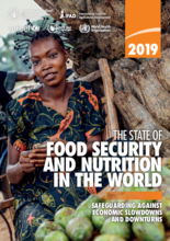 2019 - The State of Food Security and Nutrition in the World (SOFI): Safeguarding against economic slowdowns and downturns