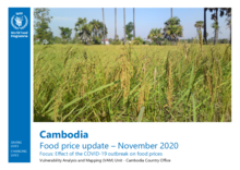 Cambodia - Food Price Update - November 2020