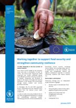 PRO-ACT: El Niño Response in the Dry Corridor of Central America, 2016-2018