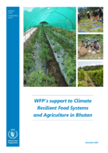WFP support to Climate Resilient Food Systems and Agriculture in Bhutan - 2020