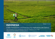 COVID-19 Economic and Food Security Implications for Indonesia - 4th Edition December 2020