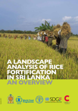 A Landscape Analysis of Rice Fortification in Sri Lanka - an Overview