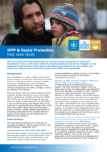2017 - WFP and Social Protection -  Iraq Case Study