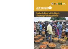 2017 - Strategic Review - Nigeria