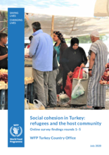 Social Cohesion in Turkey - Refugees and host community - Online Survey Findings
