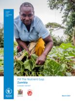Zambia Summary Report 2021 – (English)