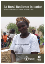 R4 Rural Resilience Initiative: Quarterly Report October - December 2018