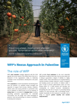 WFP's Nexus Approach in Palestine - 2021
