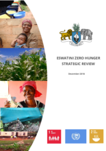 Eswatini Zero Hunger Strategic Review 2018
